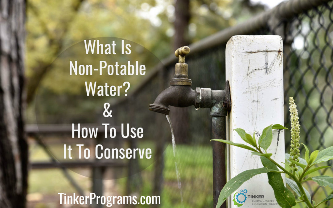 Non-Potable Water: How To Use It To Conserve
