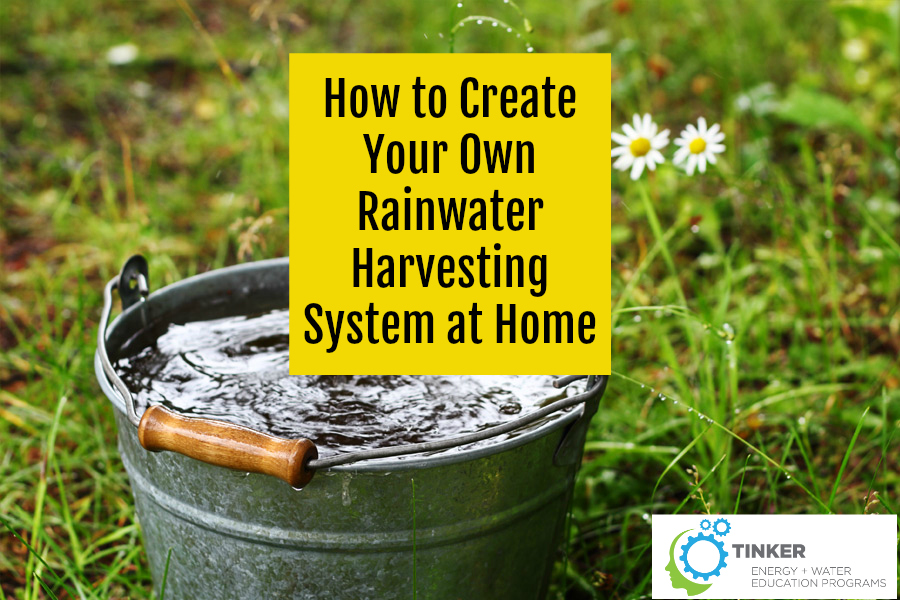 How to create your own rainwater harvesting system at home for Rainwater harvesting at home