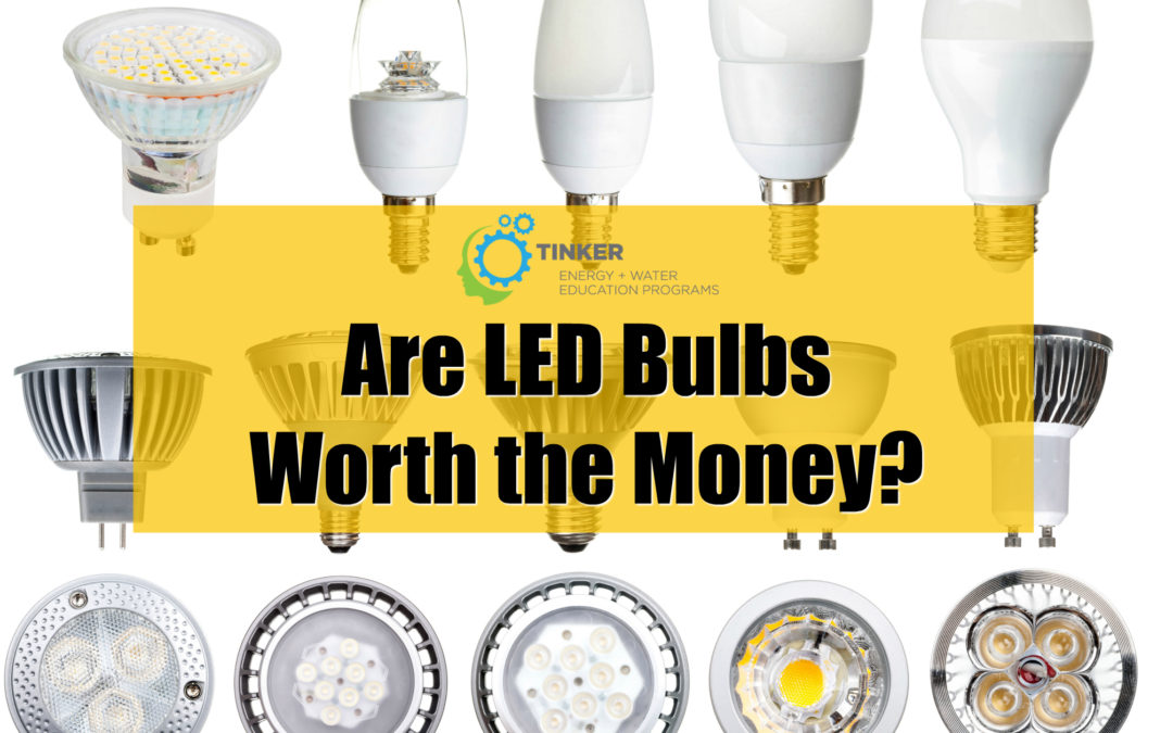 Are LED Bulbs Worth the Money?