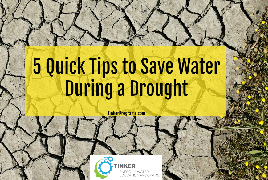 5 Quick Tips to Save Water During a Drought