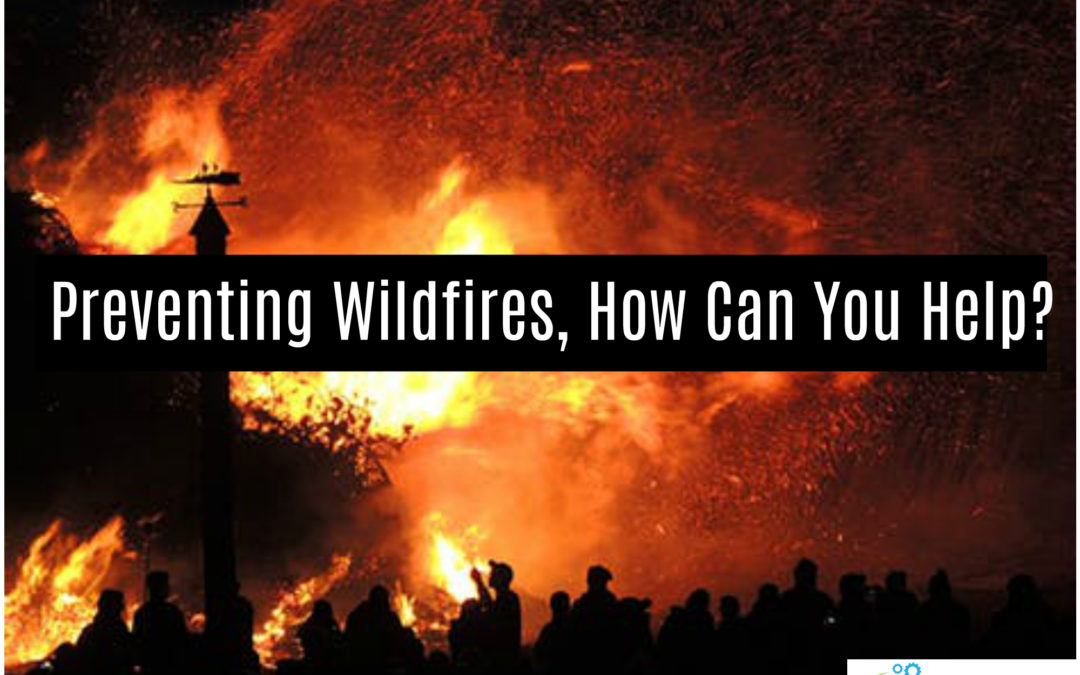 Preventing Wildfires, How Can You Help?