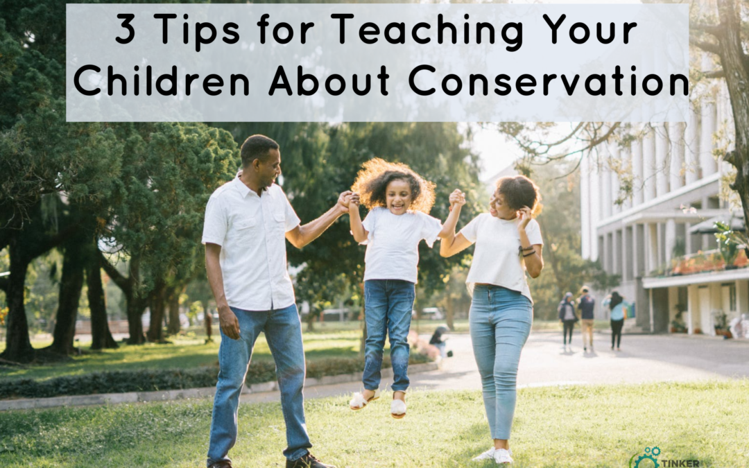 3 Tips for Teaching Your Children About Conservation