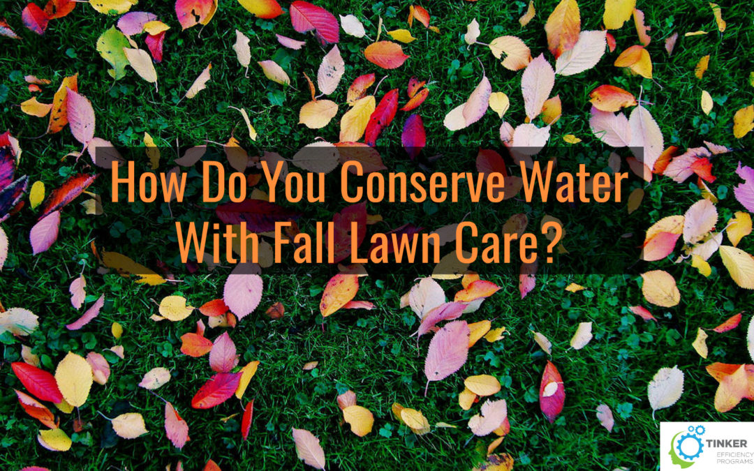 How Do You Conserve Water With Fall Lawn Care?
